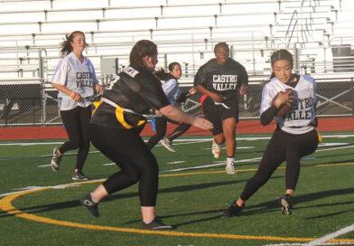 Seniors take the win again in powderpuff