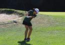 Girls golf continues winning streak