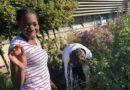 School garden grows new opportunities for students